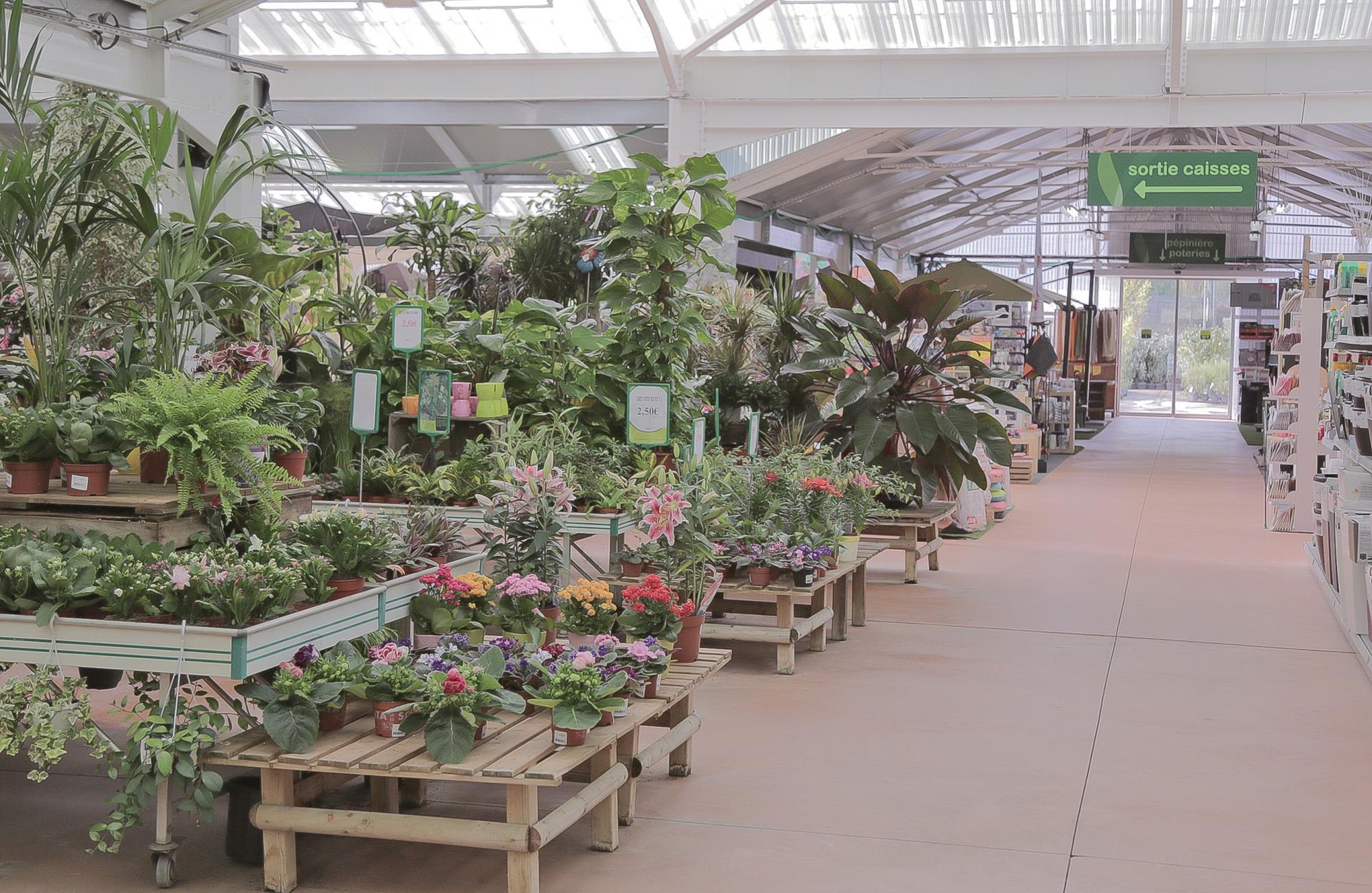 Les plantes aix la garde hyeres port grimaud villaverde for Www villaverde fr