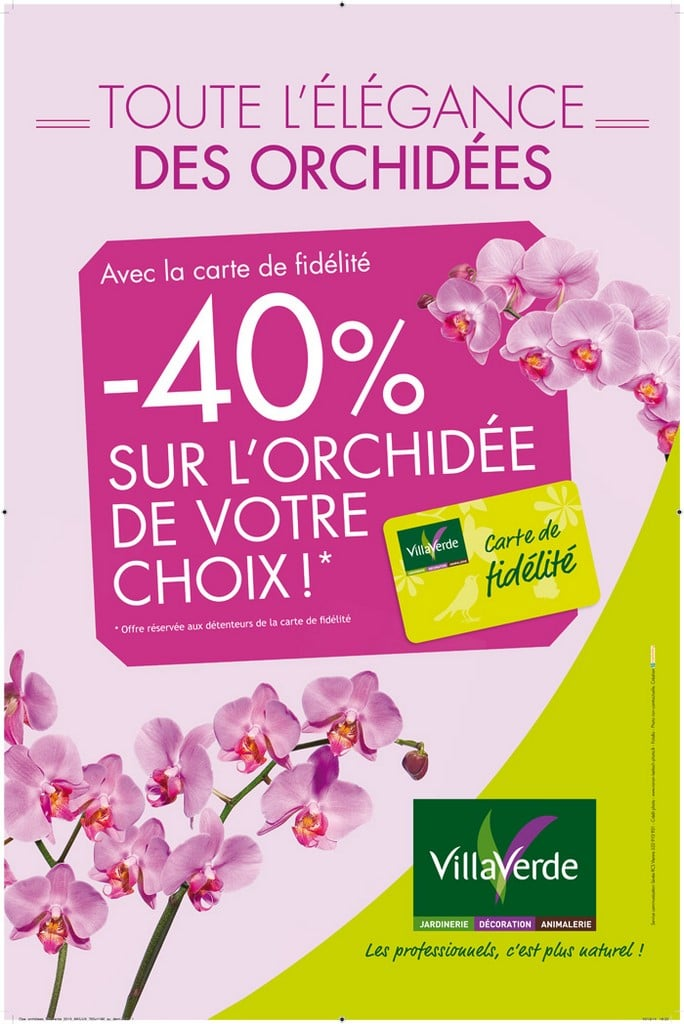 -40% sur une orchidée de votre choix* du 16 au 31 janvier 2016 inclus