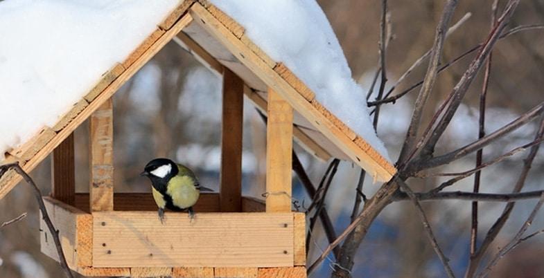 tous pour les oiseaux du ciel chez villaverde. Black Bedroom Furniture Sets. Home Design Ideas