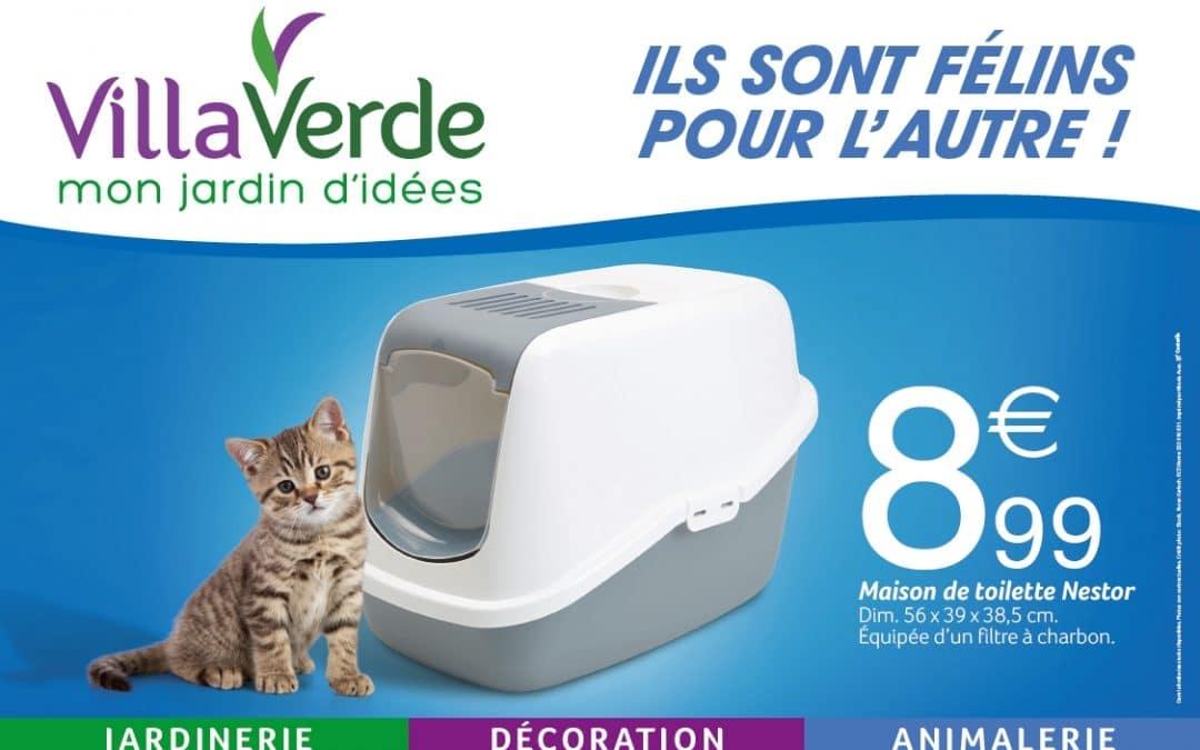 ILS SONT FÉLINS POUR L'AUTRE PROMOTIONS DU 19/01 AU 03/02/2019